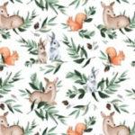 Leśne zwierzęta - BP14